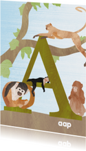 A van aap