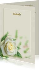 Mooie bedankkaart met wit-gele roos en tekstvoorstel