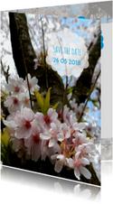 Trouwkaart bloesemboom