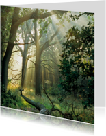 Religie kaarten - 4k Het regent zonnestralen