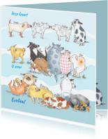 Dierenkaarten - Allemaal honden blauw