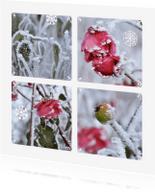 Ansichtkaarten - Ansichtkaart winter bloemen