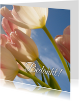 Bedankkaartjes - bedanktkaart tulpen - LB