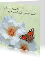 Beterschapskaarten - Beter met rozen