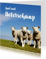 Beterschapskaarten - Beterschaap lieve lammetjes - OT