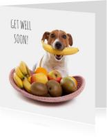 Beterschapskaarten - Beterschap - Boris de hond -  fruitmand