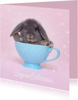 Beterschapskaarten - Beterschap - Cup a Cuteness