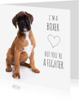 Beterschapskaarten - Beterschap - I'm a boxer