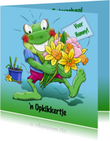 Beterschapskaarten - Beterschap lentebloemen - HE