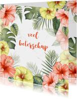 Beterschapskaarten - Beterschap tropische bloemen