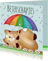 Beterschapskaarten - Beterschapskaart kat in de regen(boog) - Sk