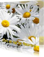 Beterschapskaarten - Beterschapskaart, opfleuren