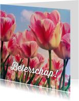 Beterschapskaarten - Beterschapskaart tulpen III - LB