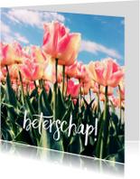 Beterschapskaarten - beterschapskaart tulpen IV - LB