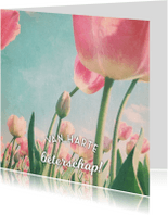 Beterschapskaarten - beterschapskaart tulpen - LB