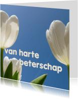 Beterschapskaarten - beterschapskaart tulpen VIII -LB