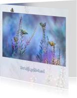 Verjaardagskaarten - Blauw vlinder-fantasie