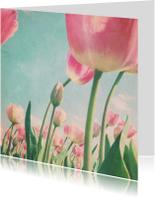 Bloemenkaarten - Bleke tulpen