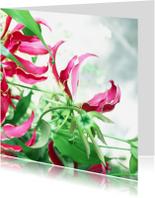 Bloemenkaarten - Bloemen dromerig roze&groen