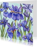 Bloemenkaarten - Bloemen Lisse aquarel