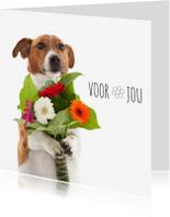 Bloemenkaarten - Bloemenkaart - Boris de hond - Voor jou