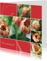 Bloemenkaarten - Bloemenkaart open tulp rozerood
