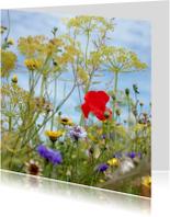 Bloemenkaarten - bloemenveldje met een klaproos