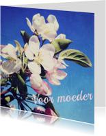 Moederdag kaarten - Bloesem op moederdag