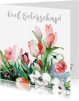 Beterschapskaarten - Bos lentebloemen aquarel