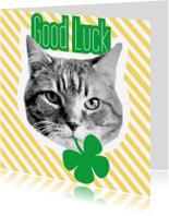 Succes kaarten - Brandal Good Luck