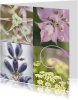 Bloemenkaarten - Collage 2 Bloemenkaart