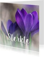 Condoleancekaarten - Condoleance - sterkte krokus