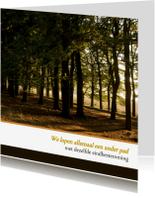 Condoleancekaarten - Condoleance Voltooid pad