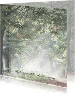 Condoleancekaarten - Condoleance zonnestralen in herfstbos