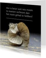 Condoleancekaarten - Condoleancekaart, gedroogde bloem verlieskaart