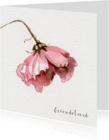 Condoleancekaarten - Condoleancekaart met waterverf Cosmea bloem schilderij