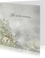 Condoleancekaarten - Deelneming met hortensia