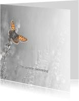 Condoleancekaarten - Deelneming met vlinder