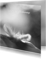 Condoleancekaarten - Deelneming veer zwartwit