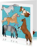 Dierenkaarten - Dieren Paardenkaart Chiwowy