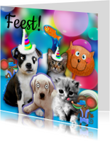 Kinderfeestjes - Dieren uitnodiging