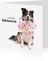 Verjaardagskaarten - Dieren verjaardagskaart - Border Collie Bloemen