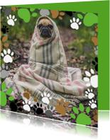 Dierenkaarten - Dierendag hondenpootjes - DH
