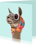 Dierenkaart 'Fashion lama'