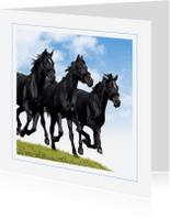 Dierenkaarten - Dierenkaart galopperende paarden