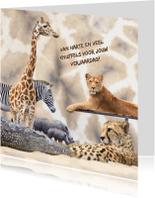 Dierenkaarten - Dierenkaart giraffeprint