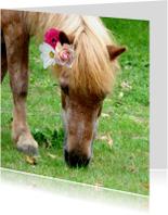 Dierenkaarten - Dierenkaart Paard met bloemen