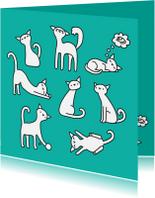 Dierenkaarten - Dierenkaart Poesjes