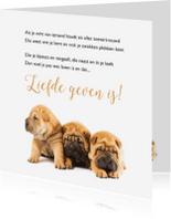 Gedichtenkaarten - Drie hondjes-isf