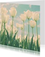 Bloemenkaarten - een veld met tulpen